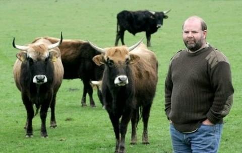 """""""Vacile naziste"""" au băgat în sperieţi Marea Britanie: Vor să ucidă tot!"""