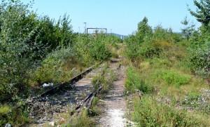 Cale-ferata-Campinita-Telega-2-300x181