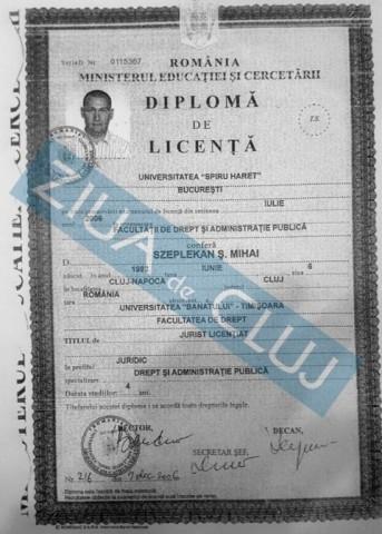 diploma-mihai-seplecan