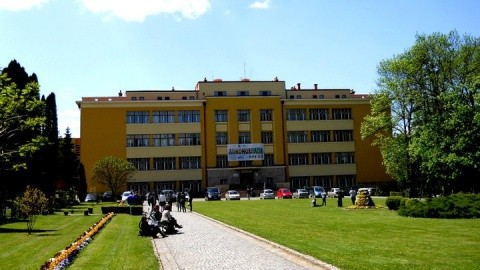 Îngheţată din lapte de cânepă, lichior din dovleac şi pâine cu cafea verde, create de studenţii USAMV Cluj-Napoca
