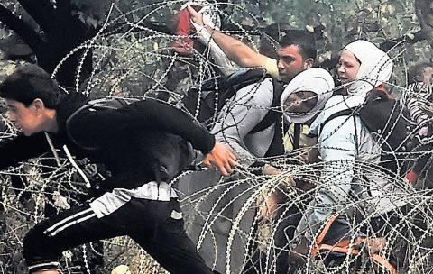 gard_ungaria_imigranti
