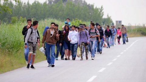 Zeci de imigranţi abandonaţi la marginea unei păduri din comuna Nuşfalău, jud. Sălaj