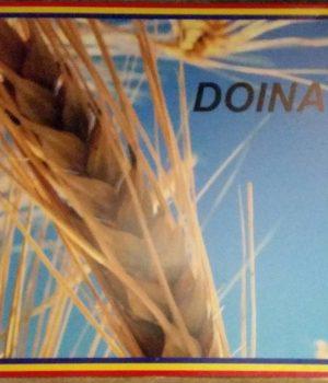 """DOINA"", un nou magazin românesc deschis la Viena!"