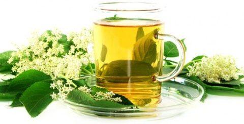 Ceaiul de soc, excelent remediu în răceli şi gripe