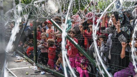 Ungaria anunță că ridică gard înalt la granița cu România de frica imigranților