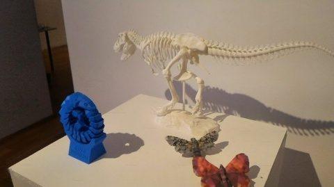 Expoziţie în premieră la Cluj: Castelul Bran, un exoschelet de dinozaur şi proteze printate în 3D