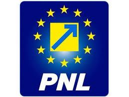 """PNL critică un deputat UDMR, care a declarat că 1918 e un """"an de doliu"""""""