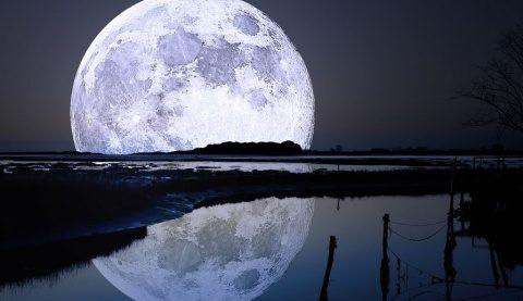 Poemul Zilei: Luna galbenă de stepă