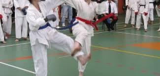 Primul Campionat Mondial de Karate Fudokan-Ikkaido dedicat persoanelor cu dizabilități la Cluj-Napoca