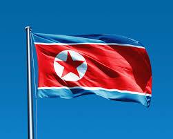 Sportivii din Coreea de Nord şi Coreea de Sud vor defila împreună cu acelaşi steag
