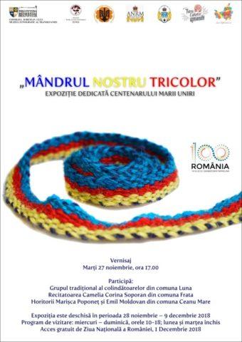 """Muzeul Etnografic al Transilvaniei prezintă """"Mândrul nostru tricolor"""""""