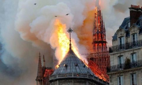 Bani pentru catedrala arsă sau cocoșitul de la Notre-Dame?