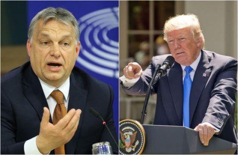 Ei pot! Donald Trump se va întâlni cu Viktor Orban pe 13 mai