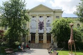 """Institutul Elie Wiesel cere terenul Muzeului """"Grigore Antipa"""" pentru realizarea unui Muzeu al Holocaustului în România"""