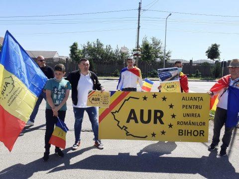 Protest împotriva tăierii de păduri la Sebeș. Jandarmii au încercat să oprească protestul