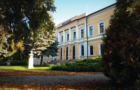 """Universitatea de Medicină şi Farmacie """"Iuliu Haţieganu"""" din Cluj-Napoca se află pe primul loc în România în clasamentul SCIMAGO 2021"""