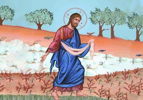 Evanghelia de Duminică: Speranța rodirii cuvântului întrece eșecul împietririi inimii