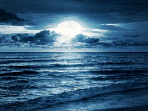 Poemul Zilei: Sunny Beach