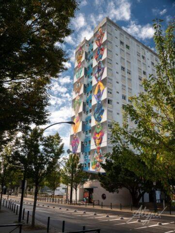 30 de ani de la înființarea Institutului Francez Cluj-Napoca.  Se colorează pereții unei clădiri de pe strada Constanța și a uneia din orașul Nantes