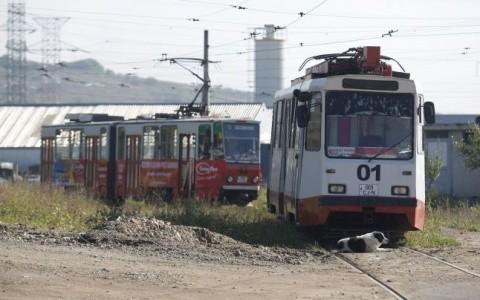 Pericol public! Tramvaie vechi de peste 20 de ani, la Cluj-Napoca