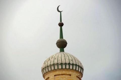 Calul Troian. Arabia Saudită oferă Germaniei 200 de moschei, una pentru fiecare 100 de refugiați găzduiți. În România se vor putea construi 60!