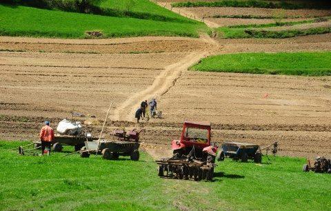 S-a votat: se interzice vânzarea terenurilor agricole la cetăţeni străini