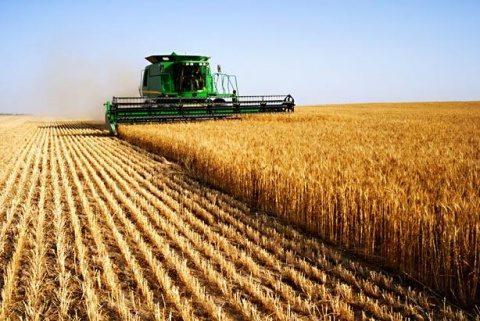 Băncile străine cumpără teren agricol românesc într-o veselie