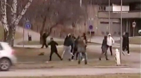 Bandă de migranți a bătut cu pietre curtea unei școli din Suedia. Elevii s-au ascuns în clădire