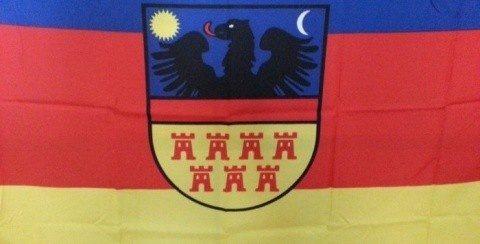 UDMR Cluj solicită explicații Jandarmeriei Române pentru acțiunea din 15 martie, de îndepărtare a steagurilor Transilvaniei