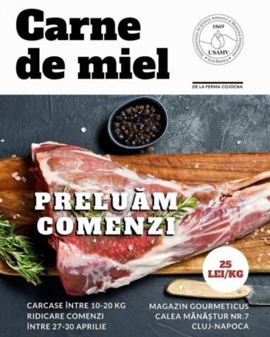 Produse de la stațiunile USAMV Cluj-Napoca în pragul Sărbătorilor Pascale: carne de miel, mușcate, stoloni de căpșuni