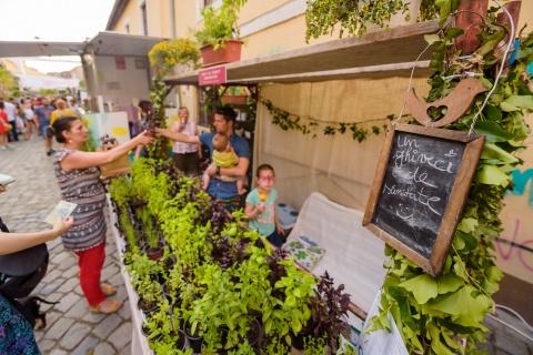 Cea mai frumoasă stradă din Cluj-Napoca revine la viață. Florile revin pe strada Potaissa, în perioada 23-25 iulie 2021, la piața la flori altfel