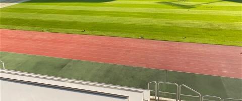 Noul gazon al Cluj Arena, în condiții excelente